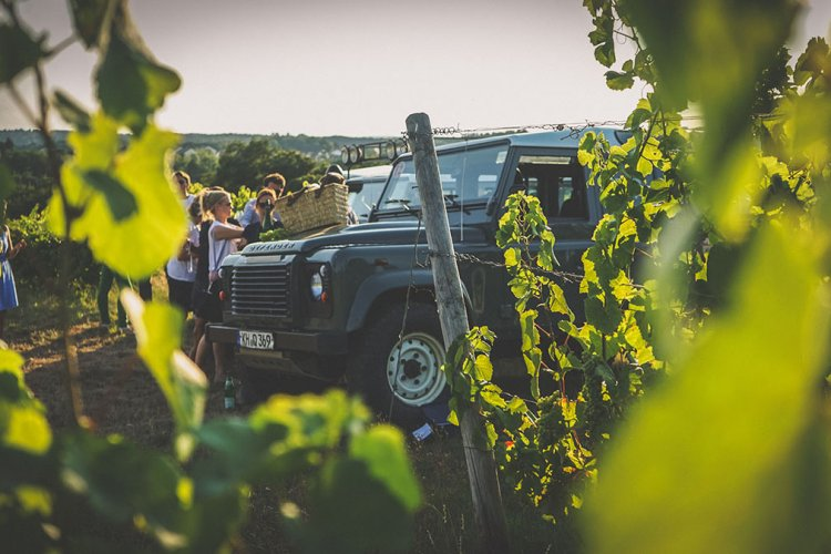 Wine-Safari in the Rheingau